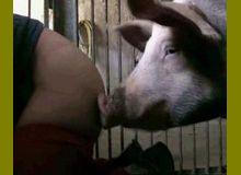 Freemovies Big Black Coocks Petite Japanese Teen Brutally Fucked By A Dog