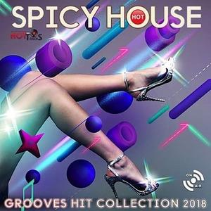 VA - Hot Spicy House (2018)